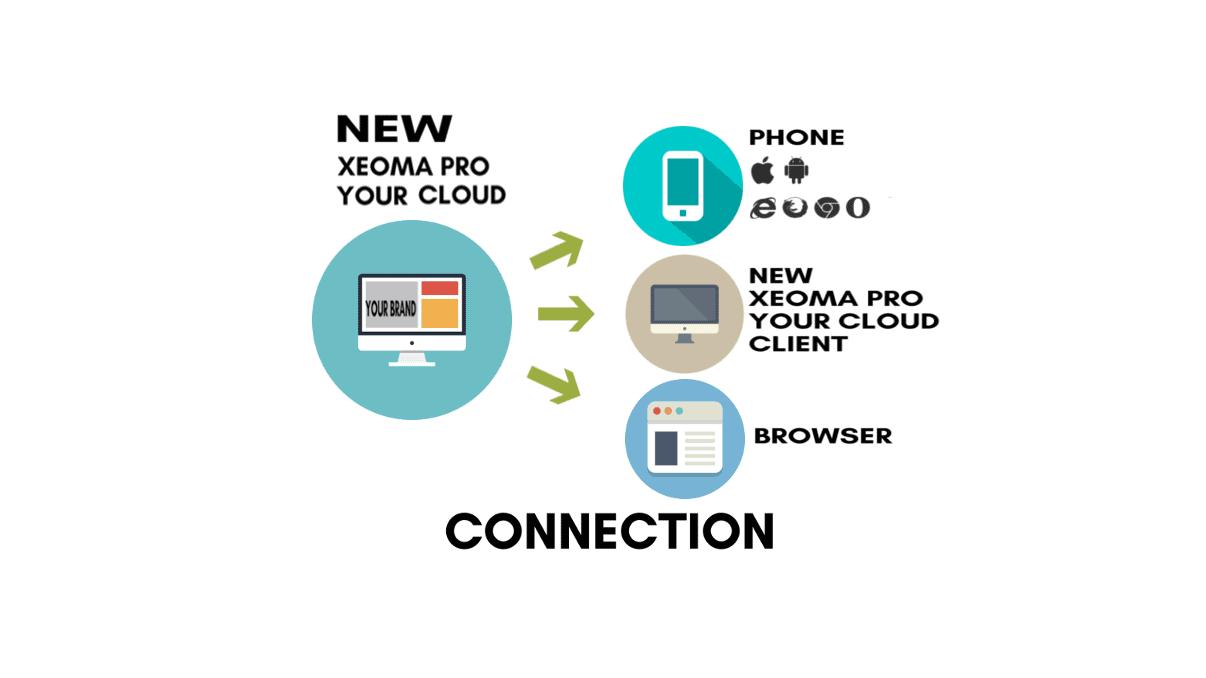 xeoma_pro_your_surveillance_cloud_solution_your_vsaas_client_connection-1